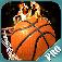 Basketball Madnessss..PRO